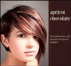 Apricot Chocolate hair color.  Chocolate brown with caramel and apricot highlights
