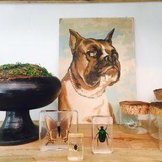 "Molly Wood Garden Design (@shopmollywood) on Instagram: ""So much good stuff! Happy Friday y'all! . . . #shoplocal #shopsmall #costamesa #paintbynumbers…"""