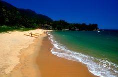 São muitos destinos tanto no litoral sul quanto no litoral norte do estado de São Paulo para os amantes e praticantes do mergulho que causa até confusão para aqueles que querem começar a praticar o esporte.