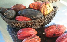Cacao Pods | Flickr - Photo Sharing!