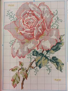 rose Cross Stitch Borders, Cross Stitch Rose, Cross Stitch Flowers, Cross Stitch Embroidery, Cross Stitch Patterns, Hama Beads, Quilt Blocks, Needlepoint, Quilts