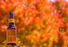 Another short list of gf beers. Six Gluten Free Beers For Fall