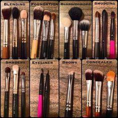 MAKEUP BRUSH GUIDE #makeupnebbie #beginnermakeup