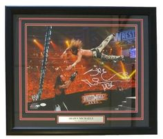 Shawn Michaels Signed WWE 16x20 Framed Photo vsUndertaker WM 26 Insc HBK JSA