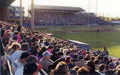 Ned Skeldon Stadium, Toledo, Ohio.  Home of the AAA Mudhens