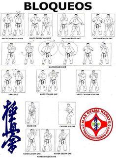 Aikido, Wado Ryu Karate, Kendo, Shotokan Karate Kata, Thai Boxe, Kyokushin Karate, Fighting Poses, Martial Arts Techniques, Martial Arts Workout