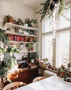sfgirlbybay / bohemian modern style from a san francisco girl Wicker Table, Old Wicker, Best Wood Stain, Decor Interior Design, Interior Decorating, Berlin Apartment, Chocolate Belga, Living Room Decor Inspiration, Interior Inspiration
