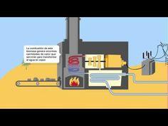 Una central eléctrica de biomasa es una instalación industrial diseñada para generar energía eléctrica a partir de recursos biológicos. Así pues, las centrales de biomasa utilizan fuentes renovables para la producción de energía eléctrica.  En el siguiente enlace tienes más información sobre centrales de biomasa: http://www.endesaeduca.com/Endesa_educa/recursos-interactivos/produccion-de-electricidad/xiv.-las-centrales-de-biomasa