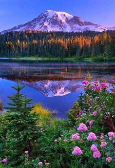 Rainier reflected in a lake – Washington State – Amazing Views – Fotografie Beautiful Photos Of Nature, Beautiful Nature Wallpaper, Nature Photos, Amazing Nature, Beautiful Landscapes, Beautiful World, Beautiful Pictures, Beautiful Friend, Beautiful Morning