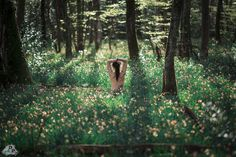 Photograph In My Glade by Dr. Alex Penot on 500px