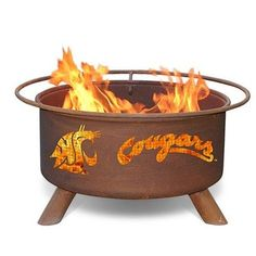 Patina Products F216 Washington State University Fire Pit Review https://outdoorfirepitusa.review/patina-products-f216-washington-state-university-fire-pit-review/