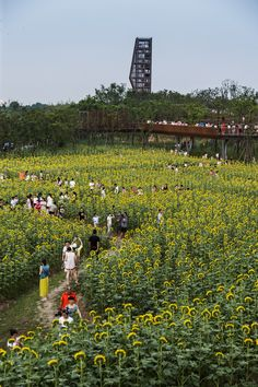 Quzhou Luming Park by Turenscape, in Quzhou, Zhejiang, China.