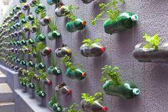 Jardins verticais são simples de fazer e são lindos na decoração, além de auxiliar na conservação do meio ambiente.