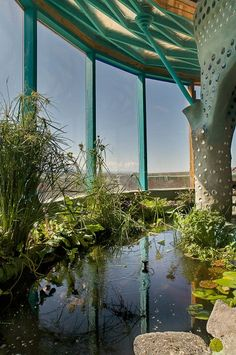Earthship indoor fish pond. Awesome.  I want to take this idea and extend it into a natural swimming pool.