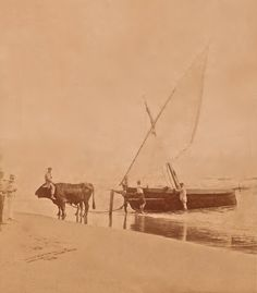 Malvarrosa, año 1900