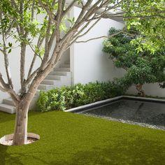 Valeria Artificial Grass by Easy Lawn buy online from the rug seller uk Artificial Turf, Green Garden, Lush Green, Garden Inspiration, Green Colors, Garden Landscaping, Lawn, Outdoor Living, Grass
