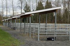 High Point paddock shelters (Run In Shed Plans) Shed Floor Plans, Shed Plans, Show Cattle Barn, Horse Pens, Cool Sheds, Horse Paddock, Horse Fencing, Fences, Horse Shelter