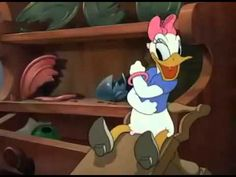 Vịt Donald Phim Hoạt Hình Tổng Hợp  Lion Around, Mr  Duck Steps Out, No ...