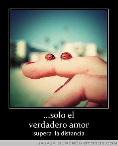 Solo El Verdadero Amor....