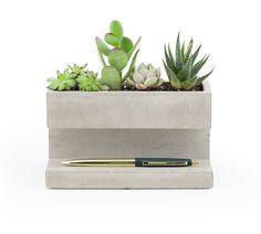 Large Concrete Plant & Pen Holder