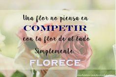 """Frases motivadoras para superar momentos de bajón en lashistoriasdemako.com: """"Una flor no piensa en competir con la flor de al lado. Simplemente florece."""""""