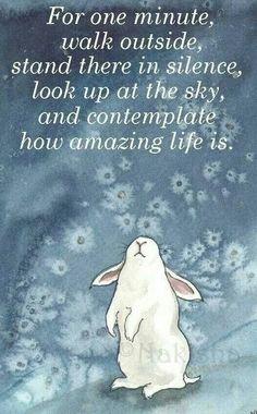 Contemplate...