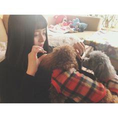 . . はぁ幸せ . #いとこの家 #ティーカッププードル #癒された #連れて帰りたい #顔が手より小さい... #Team8 #AKB48 #Instagram #InstaUpdate