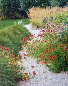 Helenium - Echinacea - Gräser