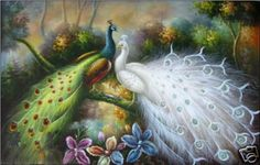 Handcraft Animal Oil Painting on Canvas,Male and female peacock 24x36inch in Art, Art from Dealers & Resellers, Paintings   eBay