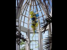Yellowtail Chandelier  2003  Franklin Park Conservatory, Columbus, Ohio