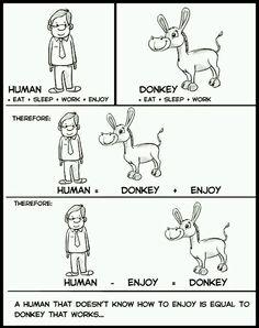 #Human Vs #Donkey