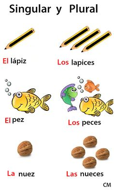 Learning Spanish: plural forms of Spanish words. Educando con amor: SUSTANTIVOS : EL NÚMERO