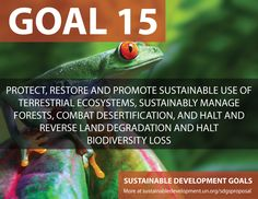 Proposal for Sustainable Development Goals ... Protect, Restore, and Promote Sustainable use of Terrestrial Ecosystem. Sustainablely Manage Forests, Combat Desertifaction, and halt and reverse Land Degradation and halt BioDiversity Loss - Sustainable Development Knowledge Platform