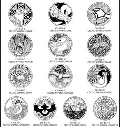 Celtic animals