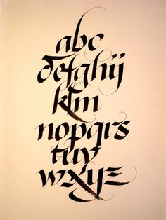 Alphabets - Calligraphie & Design                                                                                                                                                                                 Plus