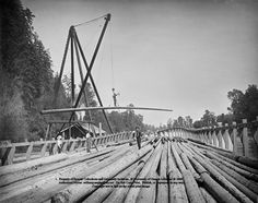 (UO106 Man riding log hoisted by steam crane above log raft in a cradle on river Oregon USA photos horizontal historic bw wsl workers)
