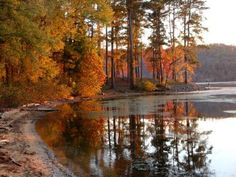 Guntersville State Park, Guntersville, AL