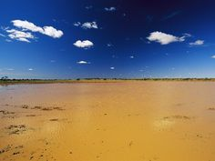 Australia Flood  Photograph by Jason Edwards    Heavy seasonal rains, unable to penetrate the hard-baked ground of Australia's Simpson Desert, form shallow lakes in Witjira National Park. These so-called ephemeral ponds support an explosion of life, from waterbirds to wildflowers, then disappear as quickly as they came.