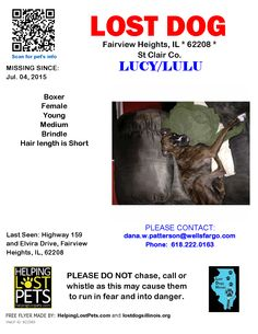missing pets website