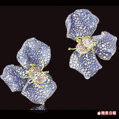 CINDY CHAO大師系列黃鑽藍寶玫瑰耳環受到香港客人關注。約5000萬元