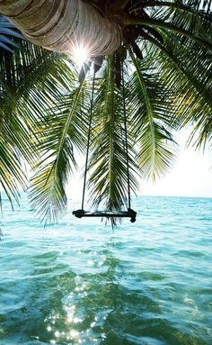 This looks just the perfect place to sit, sway and drink a cocktail, make this swing a little bigger and watching the sunset here with the one you love, friend or family would be beautiful| #MonsoonAccessorizeHoliday #Monsoon #Accessorize #Holiday #SummerStyles #Destination #TravelInspiration #Sunset #Swing #PalmTree