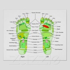 acupuncture green foot points chart