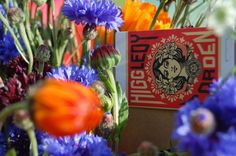 Sustainably grown flower seeds by Higgledygarden.com