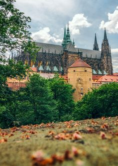 St. Vitus Cathedral and Powder Tower by Jan Zeman on 500px