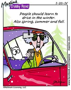 Learn to drive Winter, spring, summer, fall Maxine on Driving in Weather Learning To Drive, Aunty Acid, Road Rage, Funny Cartoons, Cartoon Humor, I Laughed, Love Her, Laughter, Funny Pictures