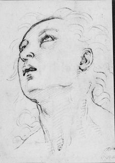Raphael (1483 - 1520)  Recto: Head of a young Man gazing upwards Verso Collections: Western Art Drawings Collection: Browse - Ashmolean Museum