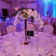 Corporate - The Green Room Florist Roundwood Seasonal Flowers, Fresh Flowers, Funeral Flowers, Wedding Flowers, Desk Arrangements, Flower Boutique, A Night To Remember, Flowers Delivered, Green Rooms