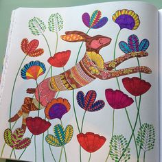 My hare #MillieMarotta #AnimalKingdom