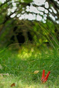 0046 Grüner Iglo | Green igloo #klammerpic #rot #clothespin #red #ontour Klammer unterwegs
