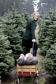finding that special tree.  Christmas card photo.  eh photography